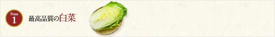 Point1 最高品質の白菜